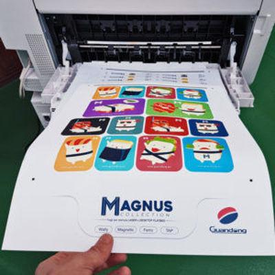 Slika Guandong Mr. Magnus - Magnet White PET sheets A3 plus