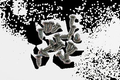 Slika Alusign TORX vijaki